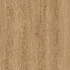 FAUS - COSMOPOLITAN - ROBLE LISBOA - S181175